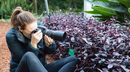 Mastering Manual Mode Photography Workshop - 4 Hours