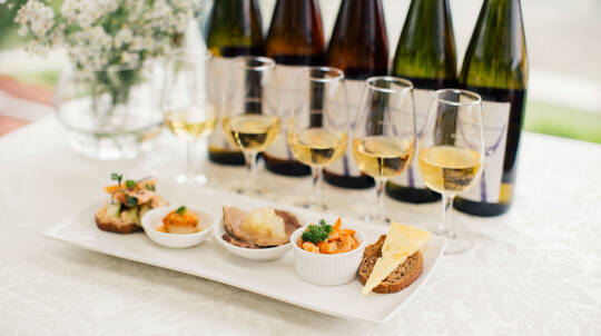 Vintage Wine Flight Class with Paired Canapes