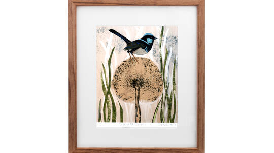 Framed Art Print - Fairy Wren