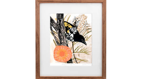 Framed Art Print - Honeyeater Bird