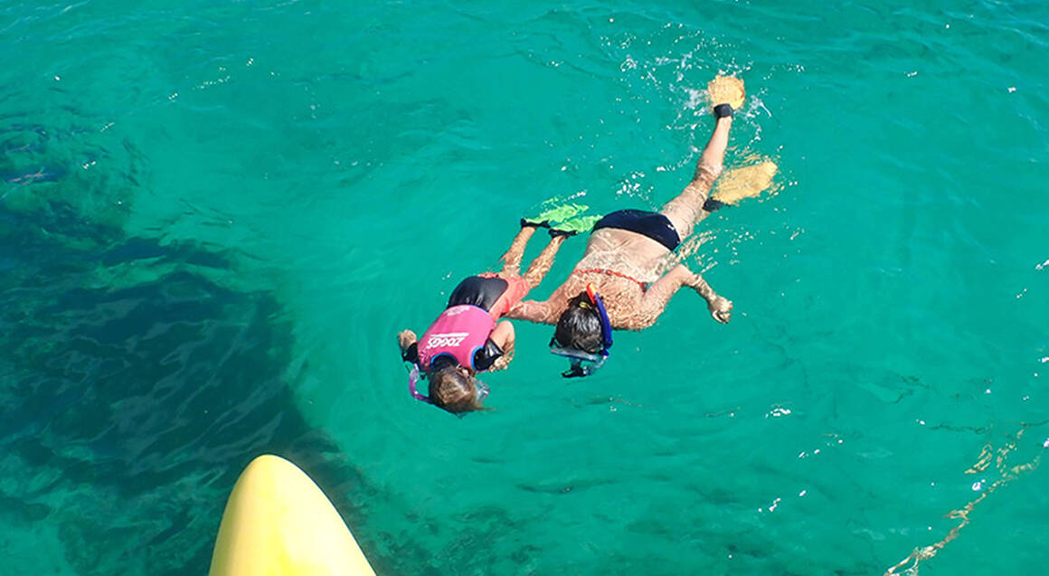 Rottnest Island Cruise with Snorkelling and More - 3.5 Hours