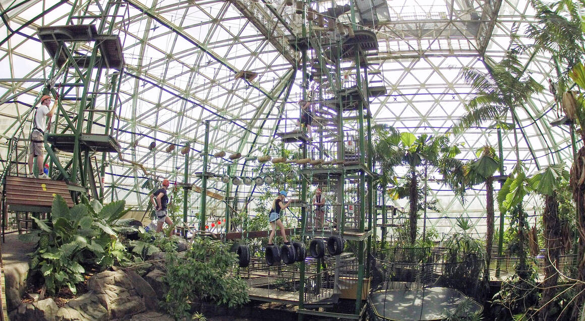 Four ZOOM Activities at Cairns Zoom & Wildlife Dome - Family