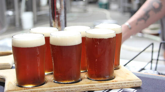 Northern Exposure Full Day Craft Brewery Tour with Lunch