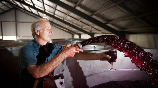Adelaide Hills Private Winery Tour - For 2