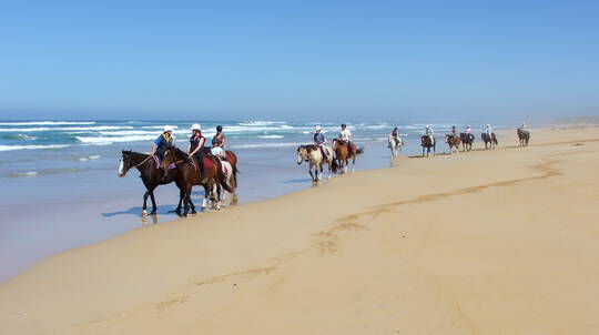 Horse Riding on the Beach - 2 Hours