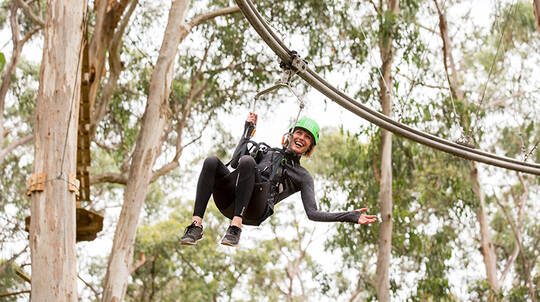 High Ropes Adventure Course - 2 Hours