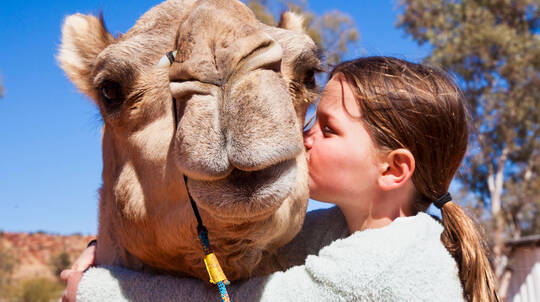 Outback Sunset Camel Ride Tour - Child