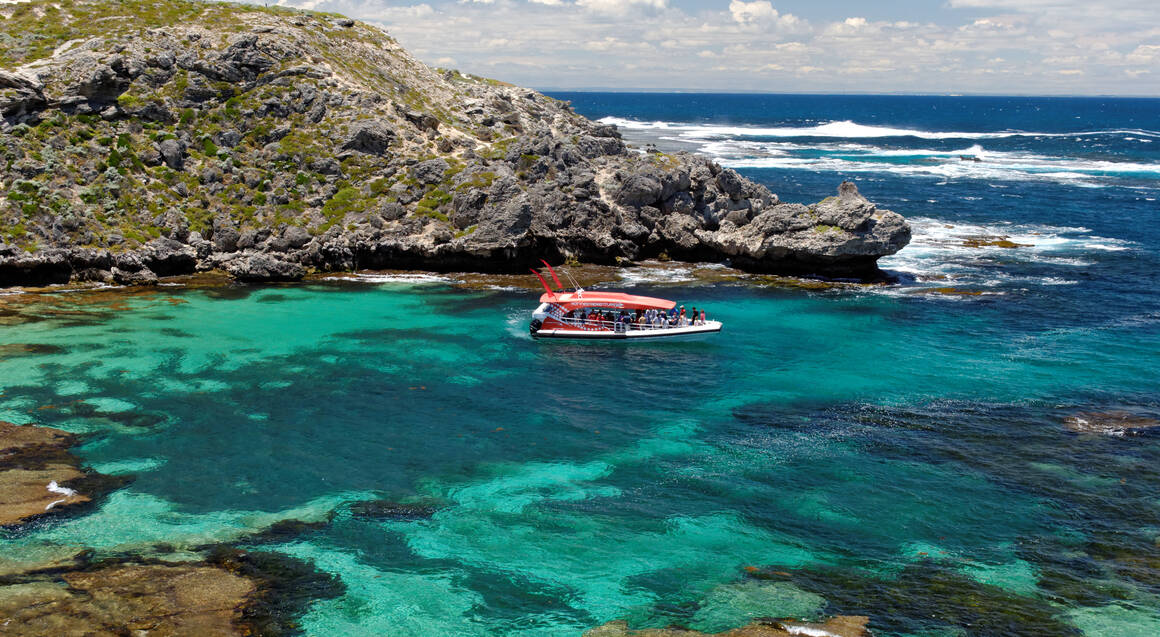 Rottnest Island - Ferry and Thrill Ride - Fremantle - Adult