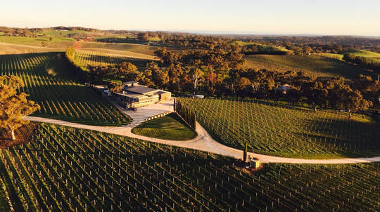 Helicopter Flight with Lion Encounter and Winery Lunch