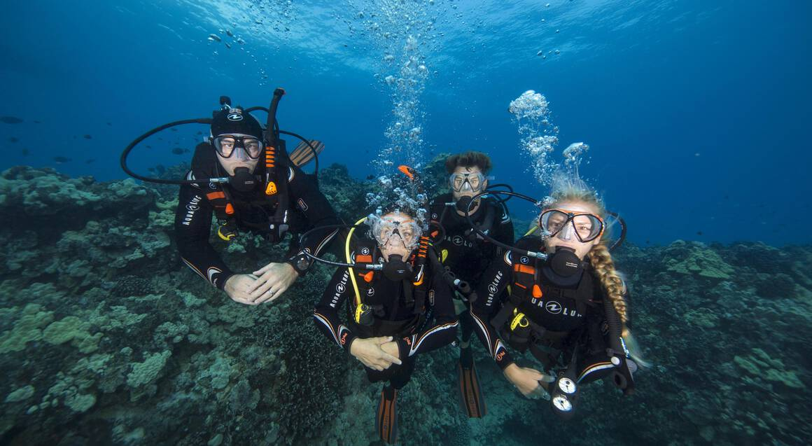 Learn To Scuba Dive in Sydney - Half Day