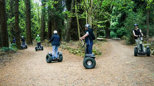 Forest Segway Adventure - 90 Minutes