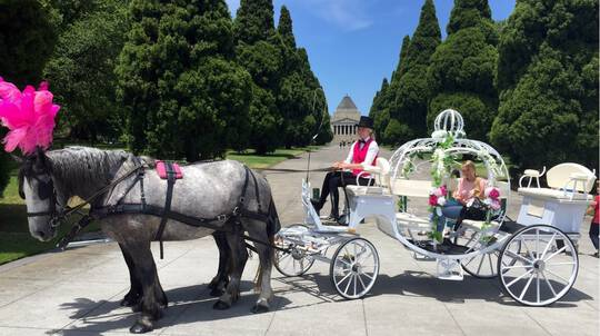 Princess Horse Drawn Carriage Ride