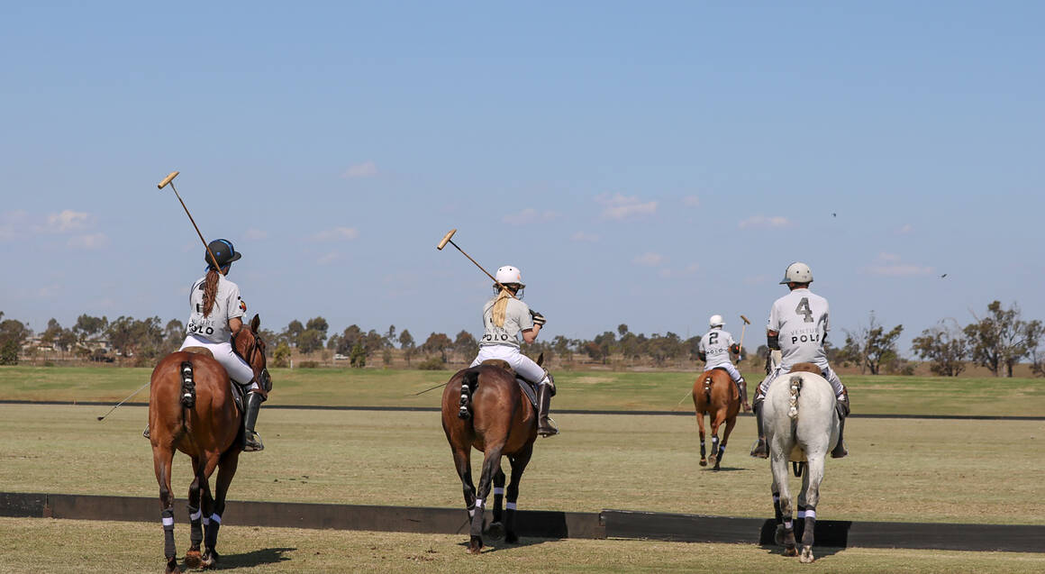 Group Polo Lesson with Food and Drinks
