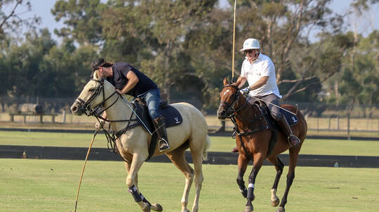 Introductory Polo Lesson - 60 Minutes