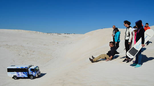Full Day Pinnacles, Lancelin 4WD and National Park Tour