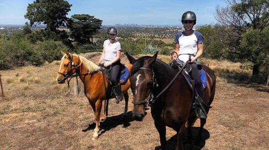 Scenic Horse Riding Tour with Stockman's Lunch - 2.5 Hours