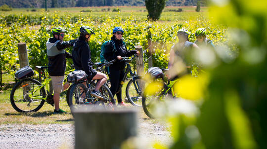 Bike the Wineries Guided Tour