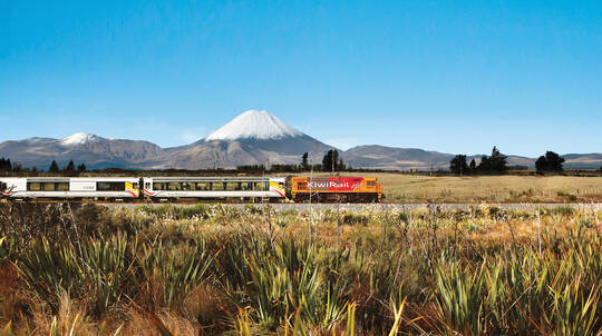 Larnach Castle and Taieri Gorge Railway Full Day Tour
