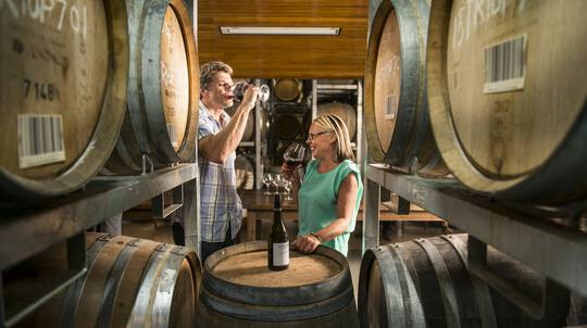 Marlborough Wings, Wheels and Wines Private Tour