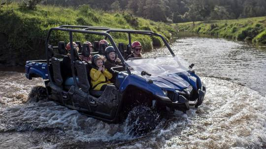 West Coast Guided Buggy Mud Tour - 60 Mins - Up To 5