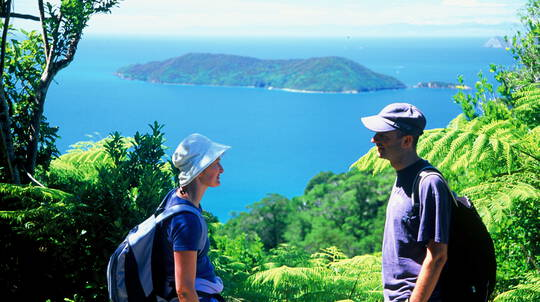 Queen Charlotte Track Guided Walk - Full Day